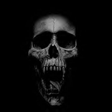 Skull background 9